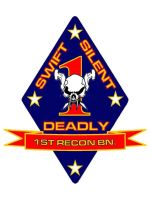 UFP Marine Corps 1st Recon Bn. by viperaviator