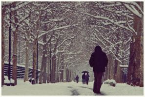 Winter boulevard by marcfaster