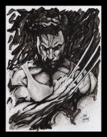 Wolverine 9 by Gary Shipman by G-Ship