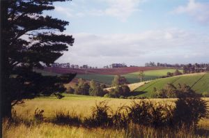 Rolling Hills, Victoria by kayandjay100