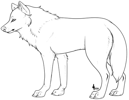 another generic wolf lineart / template by stelliformed