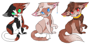 cat adopts closed by Agavny