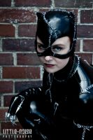 neimhaille - Catwoman 2 by static-sidhe