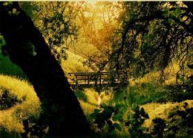 Bridge of Tranquility by Kagome62