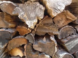 Wood by EverydayStock