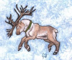 Caribou Run 2004 by Wolfyu