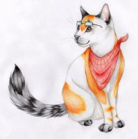 Tom, the Cat by trik-s