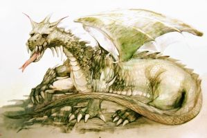 dragon 8 coloured by Flockhart