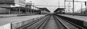 Panorama of railway station by HradelaPhoto