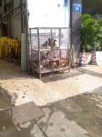 Chicken and Ducks caged by eleczero