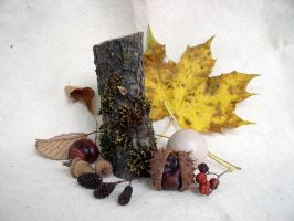 Fall Composition 1 by SanStock