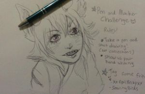 Pen and marker challange by ArcaFelidae