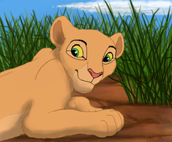 Nala Curiosity by Zoketi