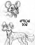 African Dog by HawksComm