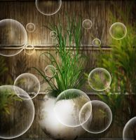 Garden Bubbles by hallbe