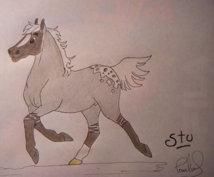 AT : Stu the foal by lupalapa