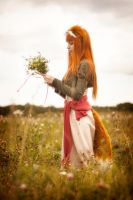Horo in Field #2 by andrewhitc