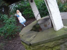Alice In Wonderland. 4 by cottontail06
