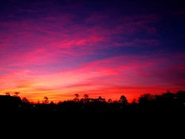 Purple and Pink Sky by Sharondipity