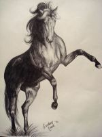 .:Pencil-Rearing Horse:. by PeaBlueJr