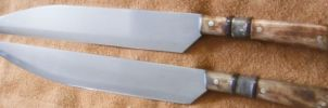 Jager seax set by Ragimond