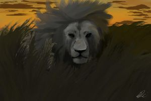 Lion by knkBoots