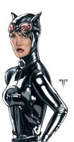 Catwoman by AIM-art