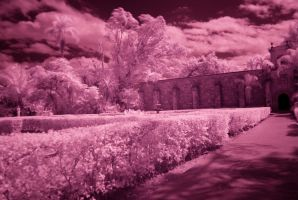 Spanish Monastery 6 of 7 Red by Solracezz