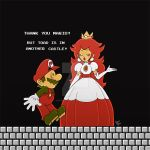 Sorry Mario... [Vintage] by DibuMadHatter