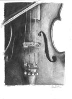 violin. by oconi