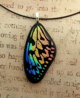 Rainbow Wood Nymph Butterfly Wing Fused Glass by FusedElegance