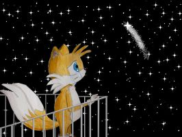 Sonic X - Missing Cosmo by HandsOffMyChocolate