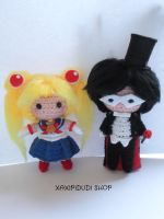 Sailor Moon and Tuxedo Mask by Xaxipidudi