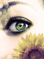Sunflower by Aurora-AE