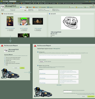 deviantArt Suggestion-Report Whole Account/Gallery by apriclty