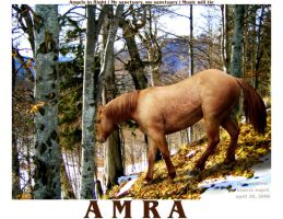 Amra by thecountess