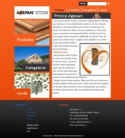 Agepan website by Lifety