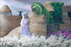 Daenerys Resolve by rsiphotography