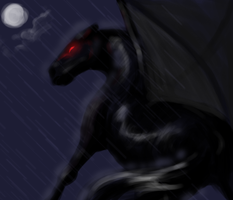 black storm by swift-whippet