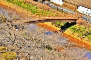 Wooden bridge in early Spring. by Furuhashi