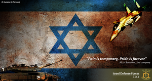 Israel Defence Forces Poster by Kuname