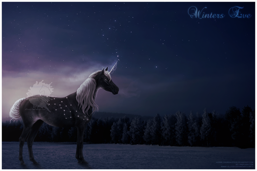 Winters Eve - Commission by Ellessy