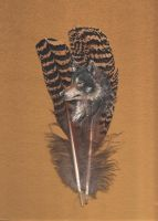 Wolf feather painting by PanHesekielShiroi