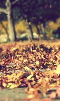 Fall by Peanut-Olive