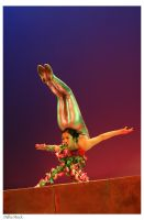 Chinese Acrobat 4 by Della-Stock