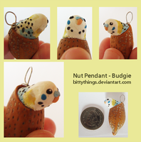 Nut Pendant - Budgie - SOLD by Bittythings