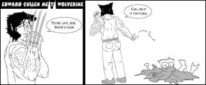 Edward Cullen Meets Wolverine by pippin1178