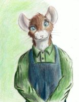 Mouse in an Apron by Master-Mofeto