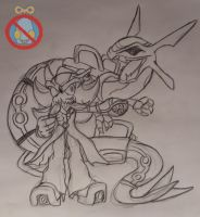 AT: Shadow and Rayquaza by shadowhatesomochao