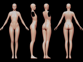 Female body (wip 3) by SFalkon